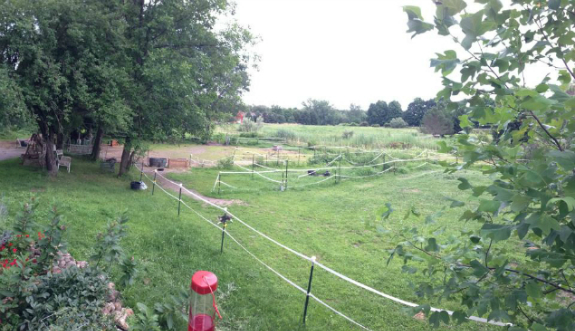 landscape at the farm